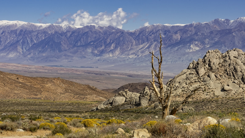Owens Valley from Buttermilk Rd