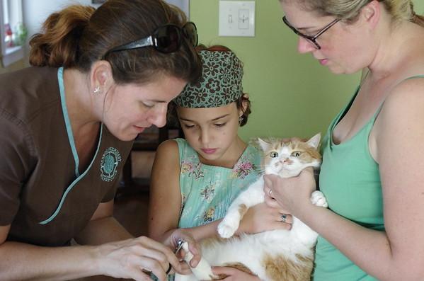 Guen helps Izzy get her toenails trimmed.