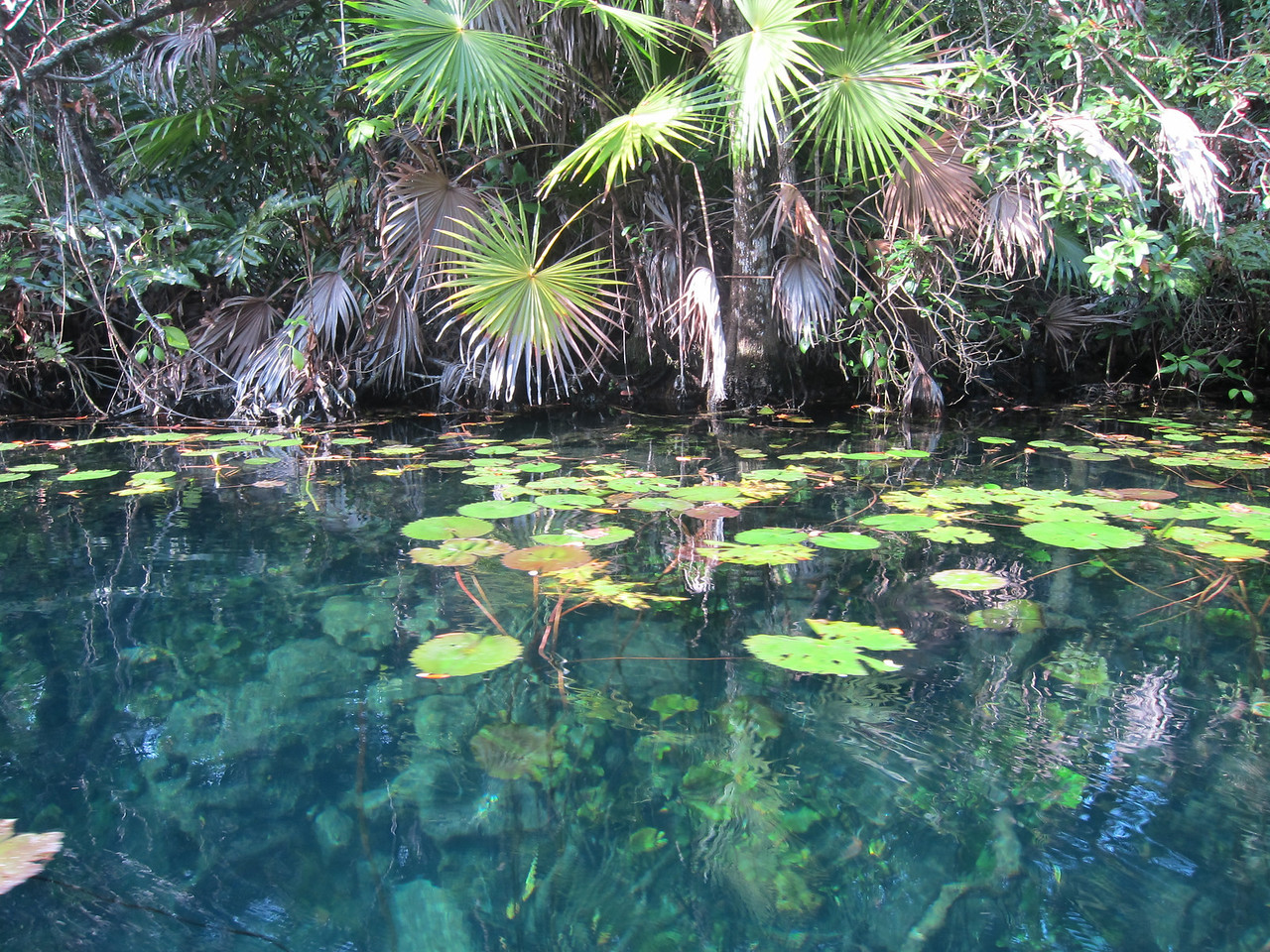 Kayaking near cenote Labna Ha