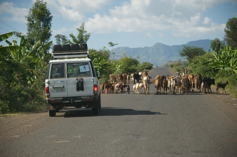 Traffic on one of the better roads
