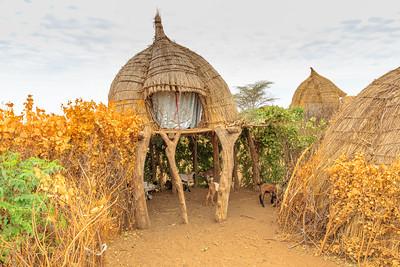Ethiopia New 2016_2467