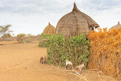 Ethiopia New 2016_2457