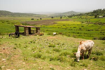 Ethiopia New 2016_0139