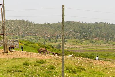 Ethiopia New 2016_0156