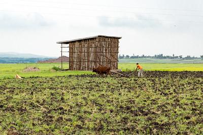 Ethiopia New 2016_1265