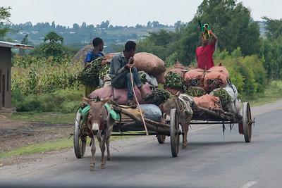 Ethiopia New 2016_1301