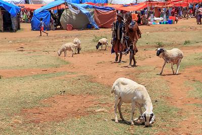 Ethiopia New 2016_2137