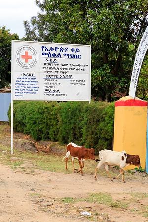 Ethiopia New 2016_2310