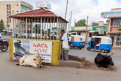 Ethiopia New 2016_1492