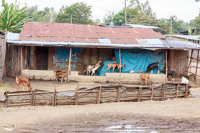 Ethiopia New 2016_1494