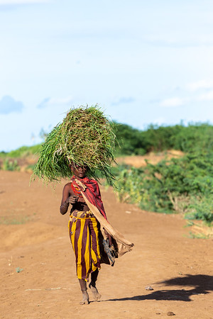 Dasanesh woman carries tef on her head, Omorate, Omo Valley, Ethiopia