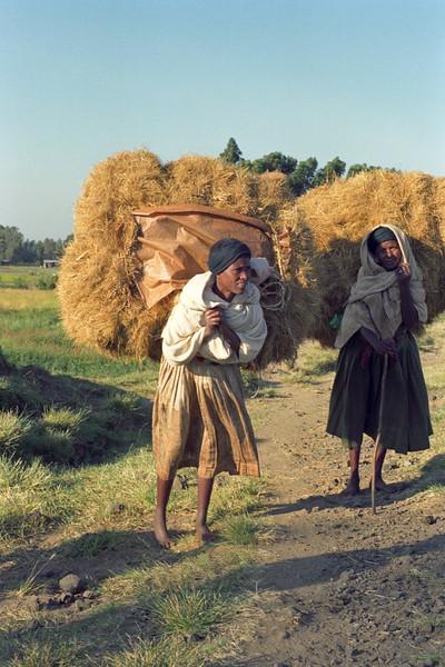 Bahar Dar 2 (Ethiopia)