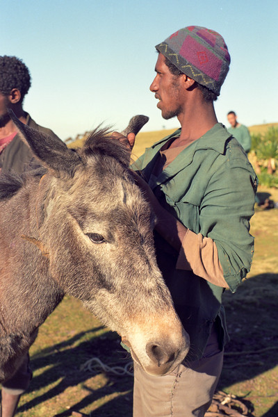 Simien Mountains 3 (Ethiopia)