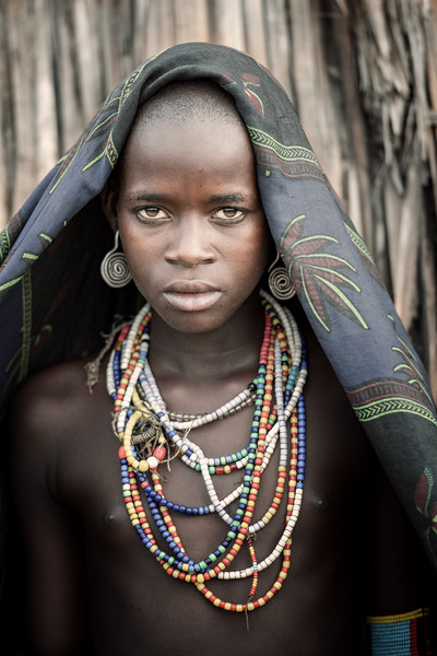 Beauty of the Arbore
