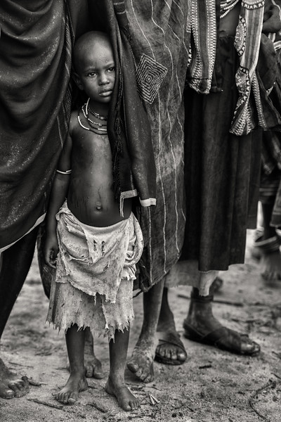 Shelter from the rain, Arbore