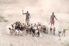 Shepherding Kara style