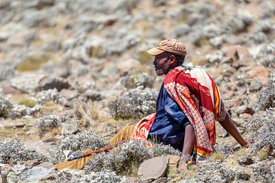 park scout with rifle in Simien Mountain, Ethiopia