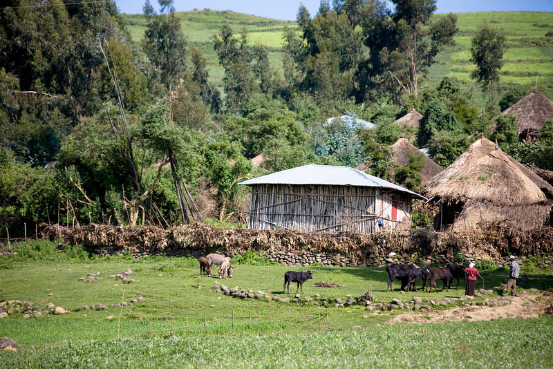 Along the road from Addis Ababa to Bati