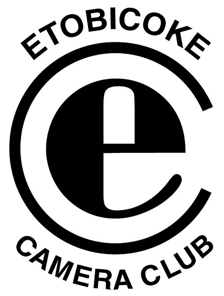 ECC Logo better
