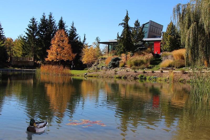 M8 - Humber Arboretum