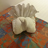 Irving the turkey, our towel animal du jour