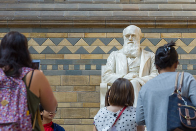 Charles Darwin in the Hintze Hall, Natural History Museum, London