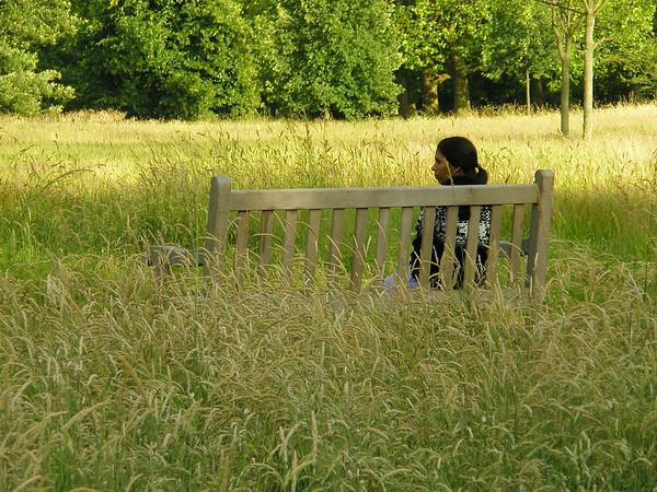 På en umalt benk i Hyde Park (Foto: Ståle)