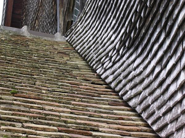 Trefilser på la Lieutenances tak (Foto: Ståle)