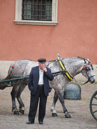 Horse cart with guide waiting for customers outside the Old Royal Palace. (Foto: Geir)