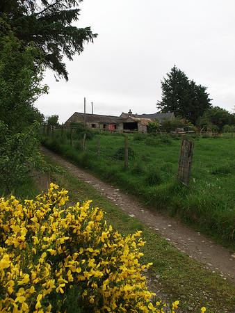 Chapelhill Croft  - one home away from home