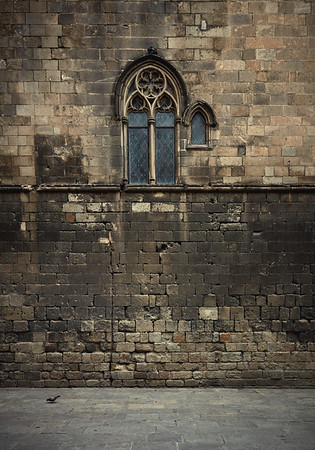 2 birds, 1 stone wall