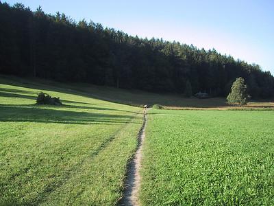 Single-track bike path, Luzern, Switzerland.