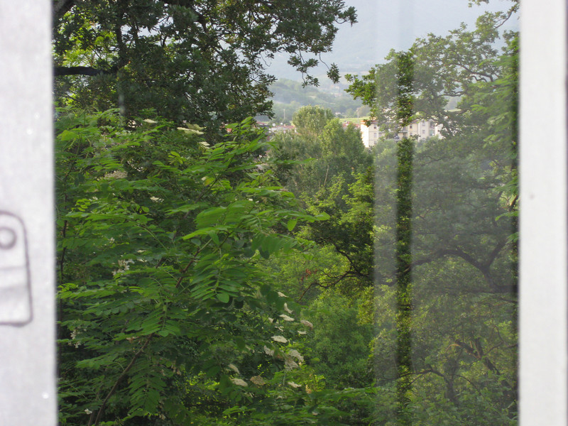 View from our kitchen window.