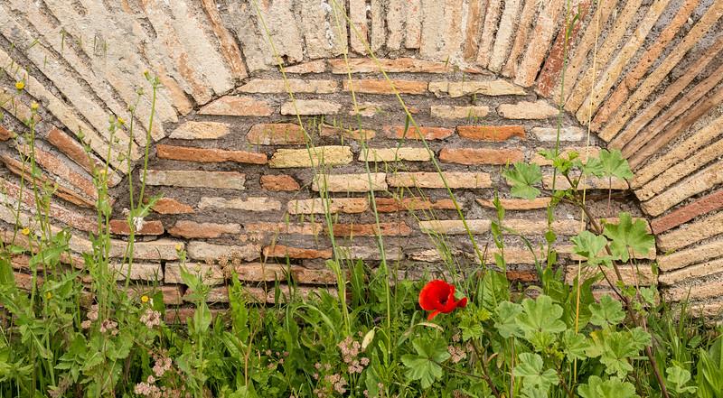 Ostia Antica. Rome. I can't resist a good brick wall.