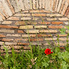 Ostia Antica. Rome. I can't resist a good brick wall.