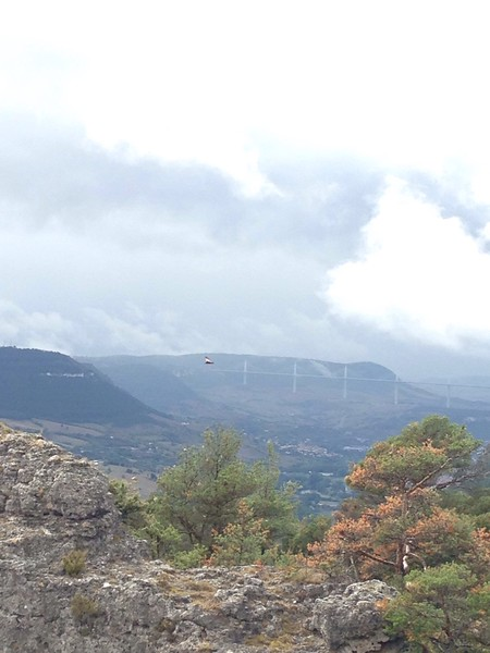 We saw a vulture glide by, but also noticed there was a bit more rain coming our way.