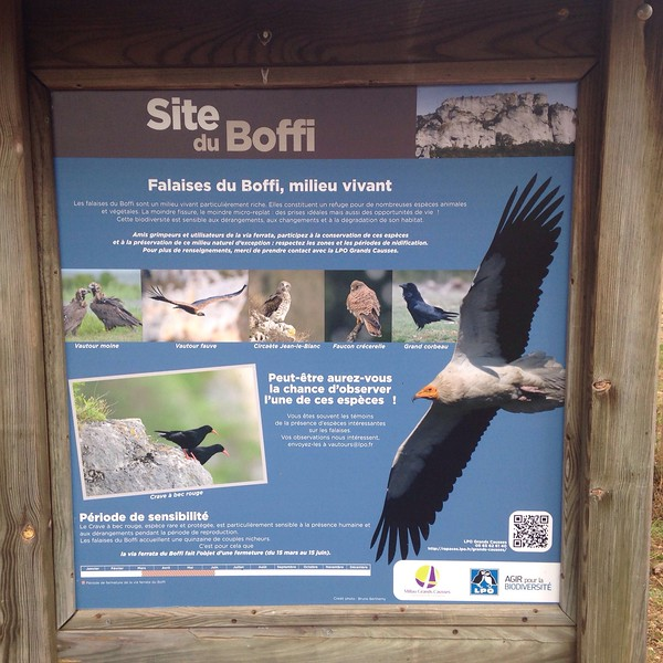 After about 30mins of driving we arrive at the car park. Some useful signs tell us about the birds to look for.