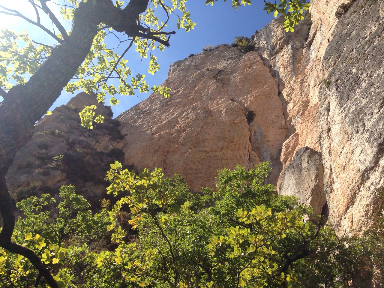 20/09/2017<br /> Went sport climbing at the Tarn yesterday, but didn't get any photos. Favourite route of the day was Tresor du Zebra (I've interpreted that to mean Zebra Treasure!) a beautiful Pickett and steep 7a.<br /> Today we're back at la Jonte. First route was the left trending diagonal crack with the bush on it called La Demande Aveyronnaise. It was 4 pitches of trad and bolts, and supposedly got three stars in the Rockfax guide. We've done La Demamde in Verdon, so this was the La Demand of this area (Aveyronnaise). It was airy, but the rock was a little average in places, and it actually wasn't that good. We were quite disappointed!