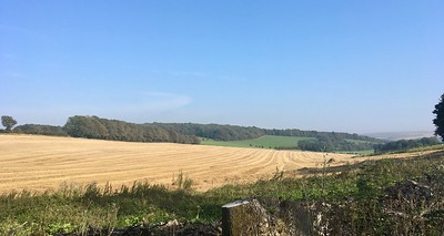 Fields near Stanmer