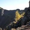 Day 04 - 005 - Vesuvius - Volcano Bowl 2