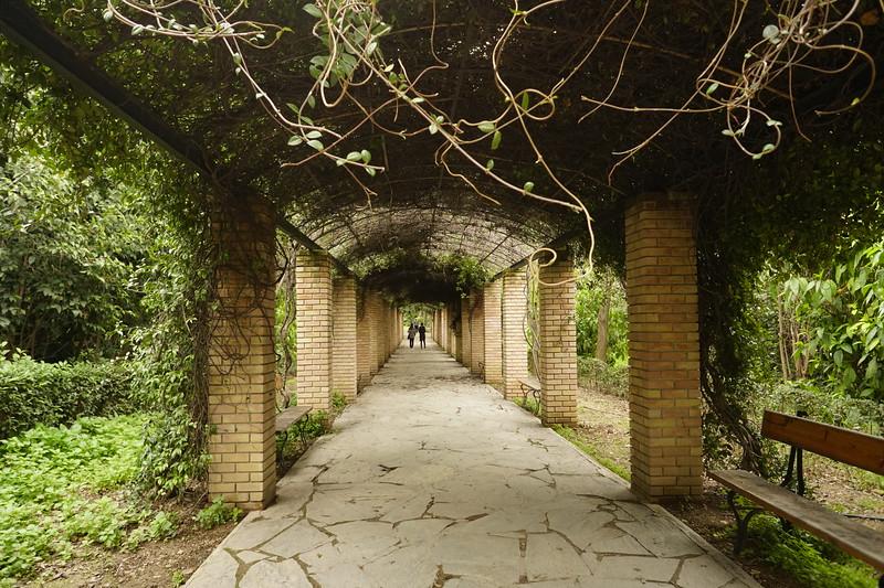 004 - Athens - National Garden