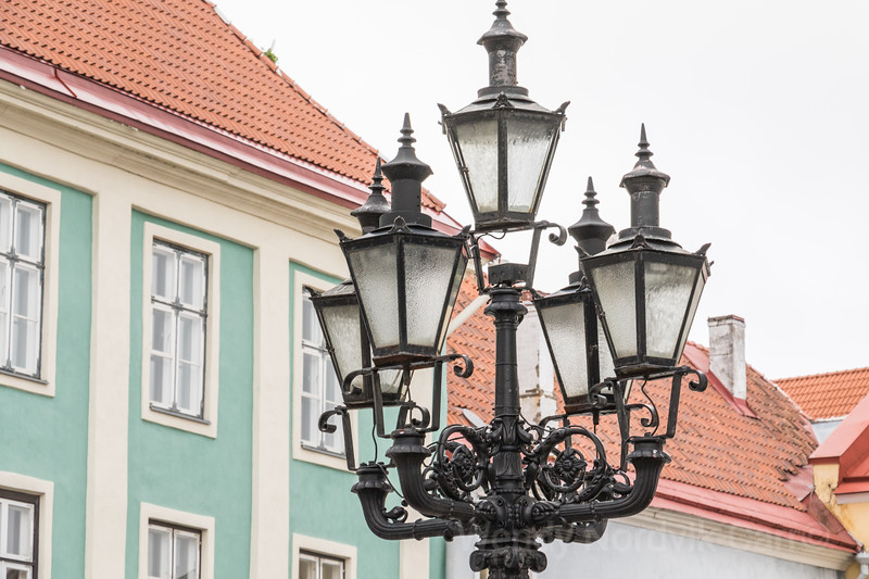 Discover Tallinn and its medieval architecture