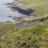 Discover Puffins on the rugged Shetland Islands, Scotland