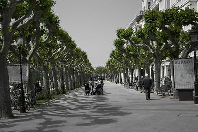Popular Street