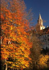 Sigmaringen castle (2)