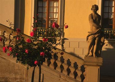 Ludwigsburg Palace, sunset detail