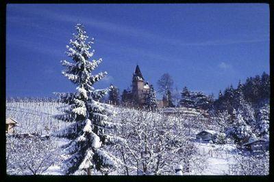 Black Forrest castle in winter