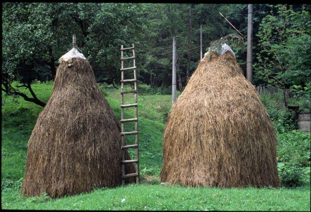 Traditional haystacks