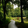 Around the inner Naarden Vesting town is a peaceful path lined with pedestrians, fishermen, and picknickers.