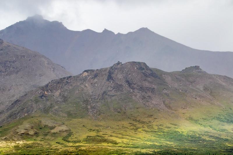Denali NP Landscape